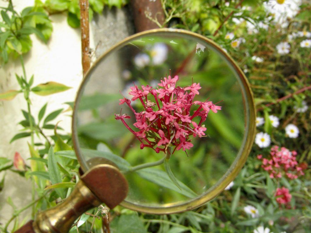 Klarheit und Fokussierung
